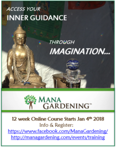 MG course flyer2-Jan 2018
